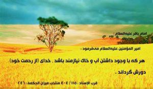 yareashena_8036_0